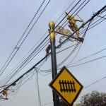 Singes sur les câbles électriques (Lopburi- Thaïlande)