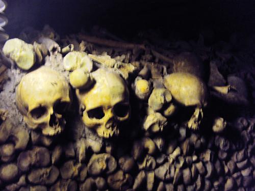 Crânes de squelettes dans l'ossuaire des Catacombes