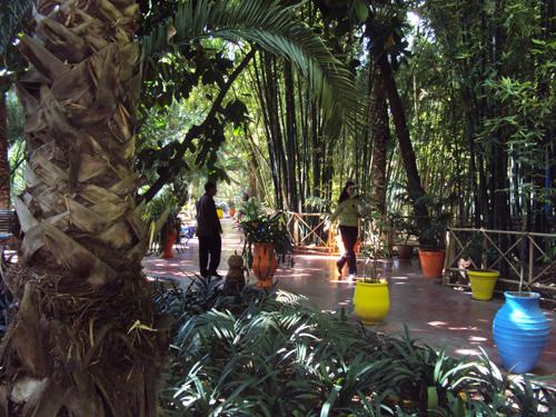 Visiter le jardin majorelle marrakech planete3w for Jardin majorelle