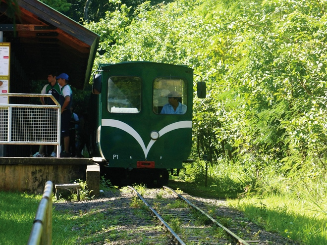 A l'intérieur du parc national d'Iguazu en Argentine les déplacements se font en petit-train