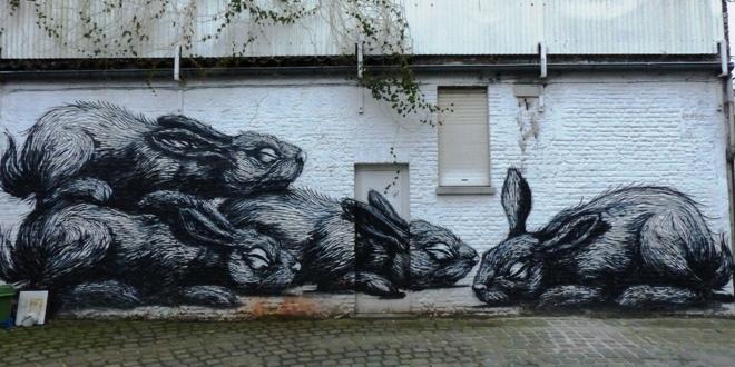d u00e9couvrir le street art  u00e0 gand