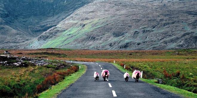Marié rencontres en Irlande