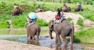 Que faire aux alentours de Chiang Mai ?