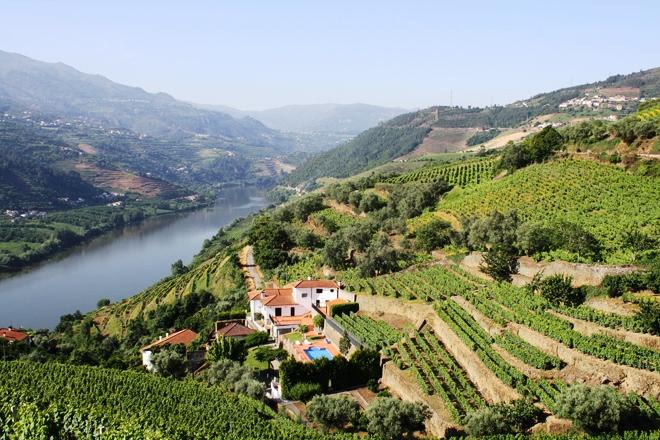 La vallée du douro près de Porto