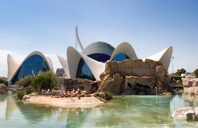 L'Oceanogràfic de la Cité des Arts et des Sciences à Valence