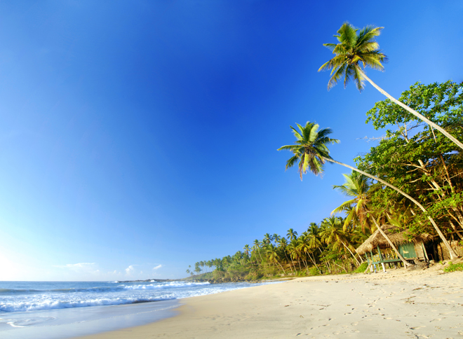 Une des plages à Tangalle au Sri Lanka : sable fin, cocotiers et eau turquoise