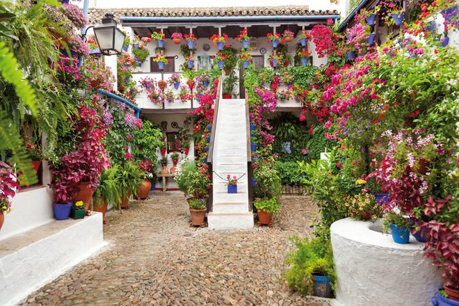 Un des nombreux patios fleuris à Cordoue