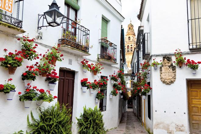 la rue des fleurs de Cordoue (La Calleja de las Flores)