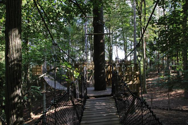 pont suspendu parc animalier des Grottes de Han