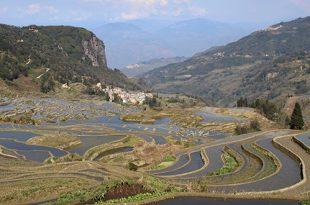 3 jours dans les rizières de Yuanyang dans le Yunnan