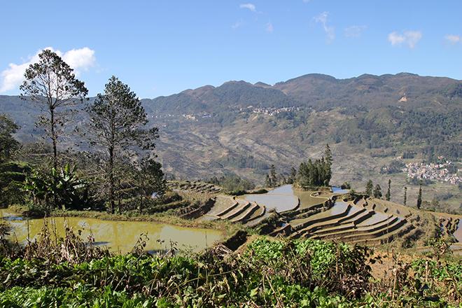 Rizières d'Azheke (Yuanyang - Yunnan - Chine)