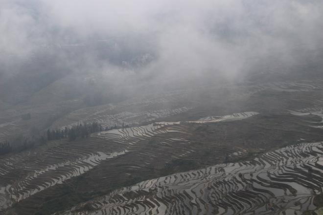 Brouillard au dessus des rizières de Duoyishu