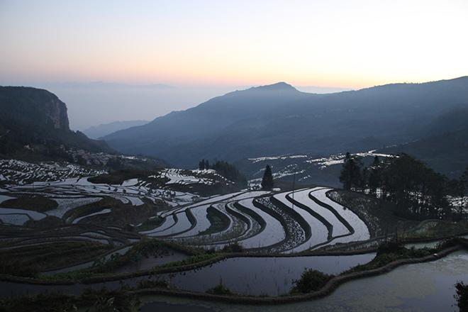 Lever de soleil sur les rizières en terrasse de Yuanyang