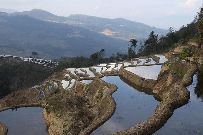 Rizières de Bada (Yuanyang - Yunnan - Chine)