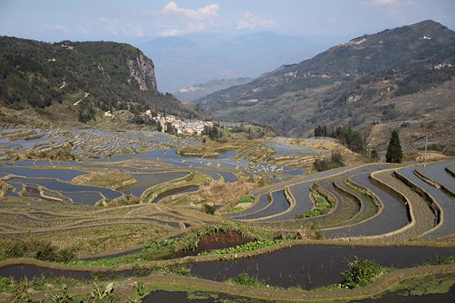 Rizières de Yuanyang dans le Yunnan