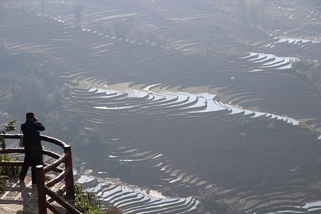 Vue gratuite sur les rizières de Yuanyang