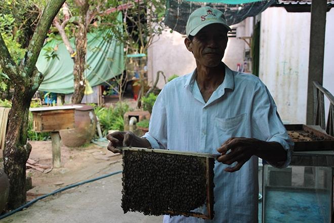 Visite d'une fabrique de miel