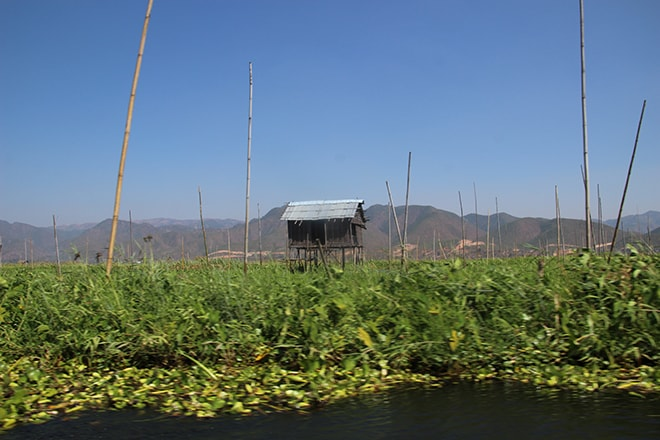 lac Inle Birmanie Jardins flottants