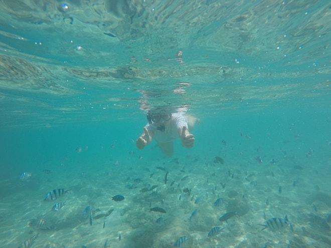 Snorkeling dans les îles Perhentian