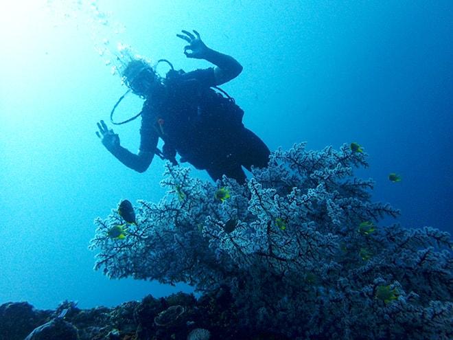Elo plongee Tulamben Dive Concept Bali plonger à Tulamben