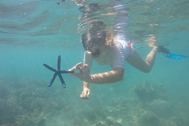 Etoile de mer bleue Tumbak