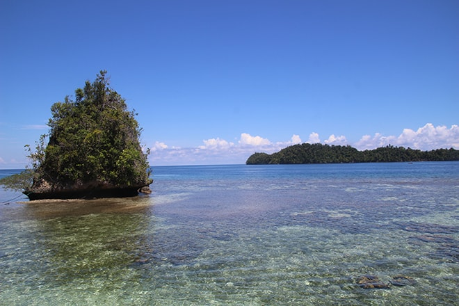 Lagon pour snorkeling Black Marling Dive Resort Kadidiri iles Togian