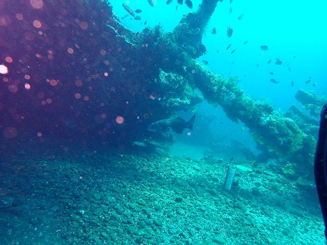 Plongee epave Tulamben Dive Concept Bali plonger à Tulamben