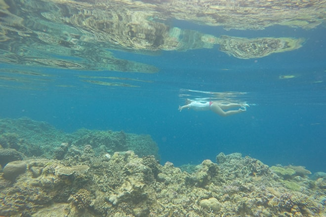 Reef 1 snorkeling Malengue iles Togian