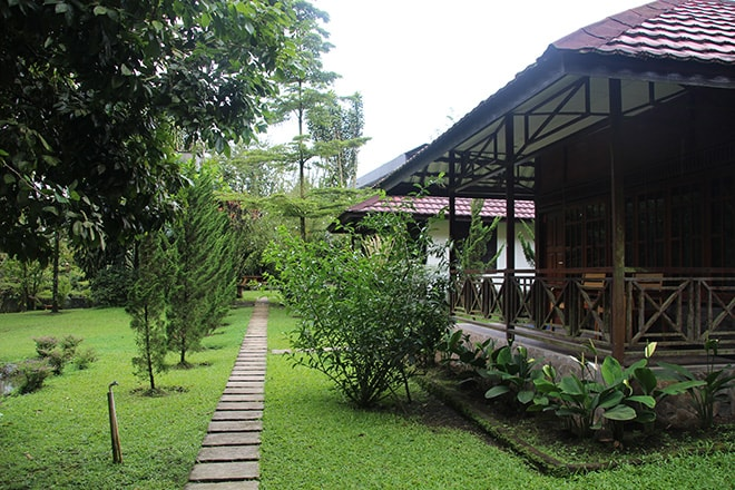 bungalows hotel happy flower tomohon