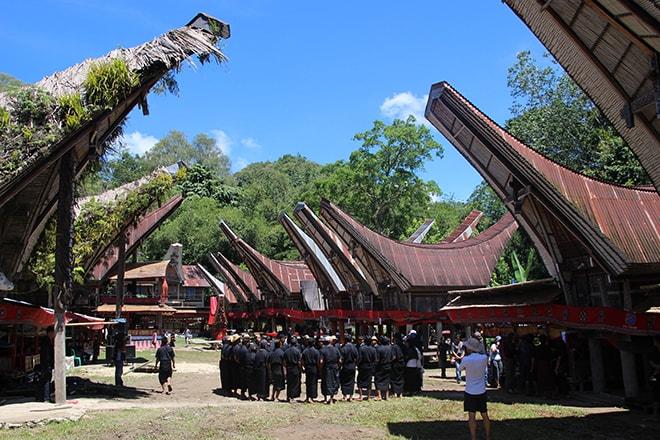 Cérémonie funéraire Pays Toraja Sulawesi