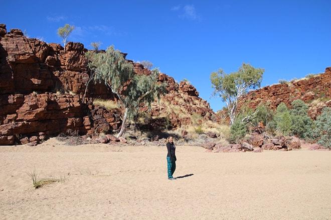 Elo dans Trephina Gorge Alice Springs