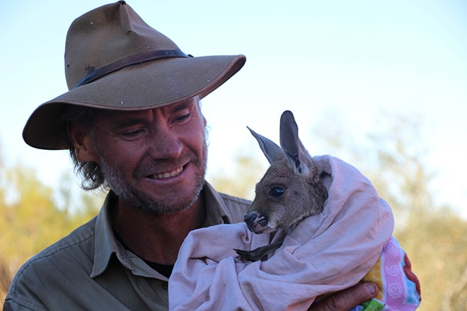 Kangaroo Sanctuary bebe Alice Springs