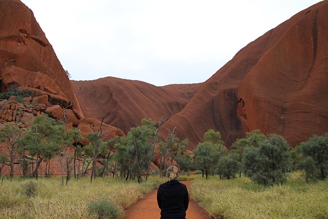 Kuniya Walk premier pas Uluru
