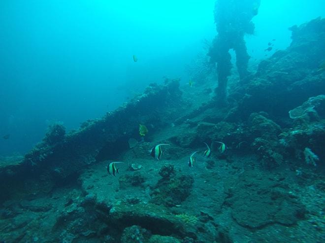 Moorish plongee Tulamben Bali Yos Marine Epave Liberty plonger à Tulamben