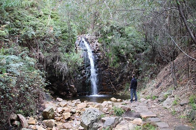 Cascade Mont Lofty Adelaide Hills Australie