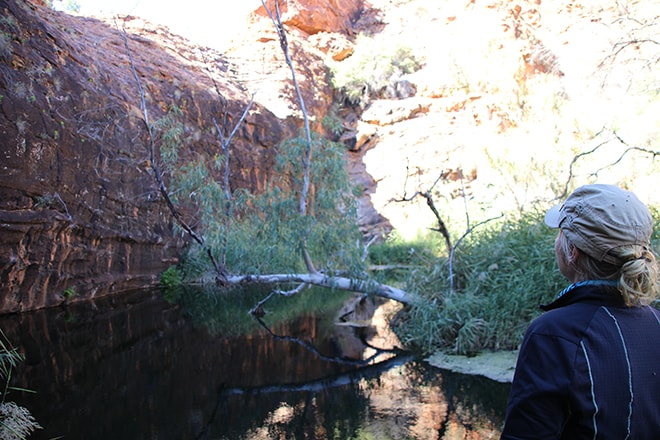Kathleen Springs Walk kings canyon australie