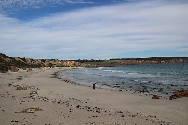 plage stokes bay kangaroo island