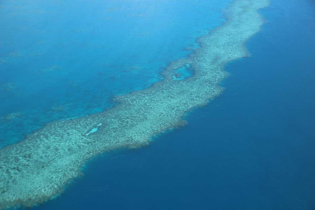 Grande Barriere de Corail Whitsundays Australie