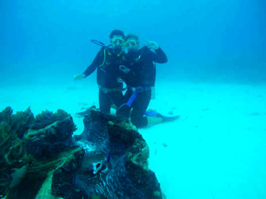 Nous plongée Grande Barrière de Corail Cairns Australie