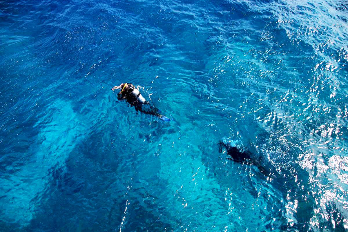 Plongee Cairns