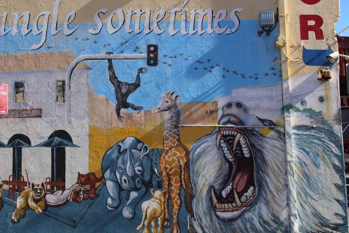 Street Art Newtown Sydney Australie