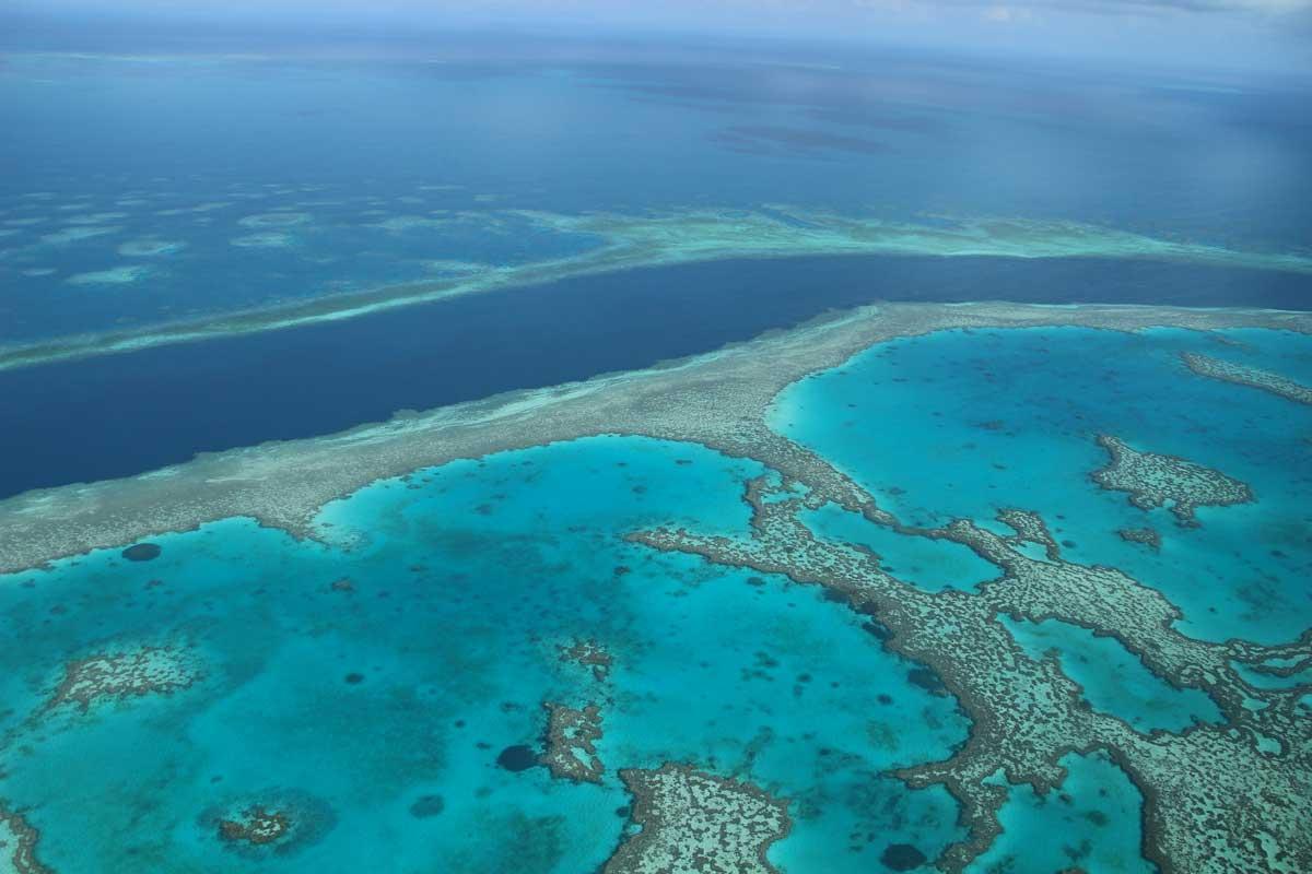 Whitsundays Australie Grande Barriere de Corail