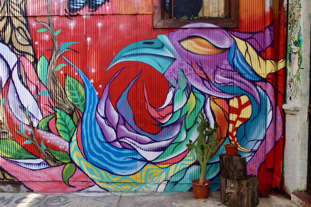 oiseau street art Valparaiso Chili