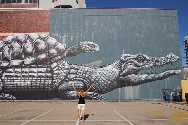 street-art townsville roa