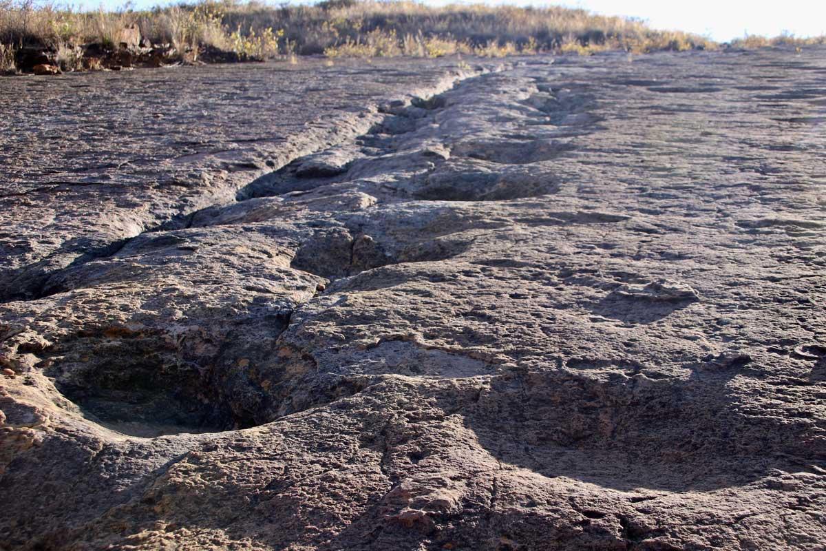 Traces dinosaure Toro Toro Bolivie