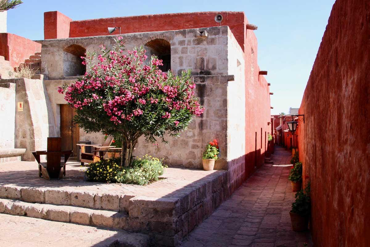 ruelle Couvent Santa Catalina Arequipa