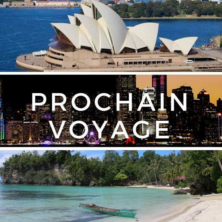 Prochain voyage : organisation de voyage
