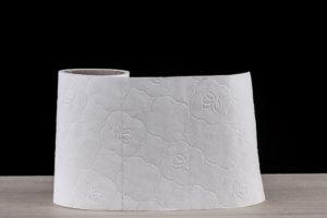 papier toilette accessoires voyage