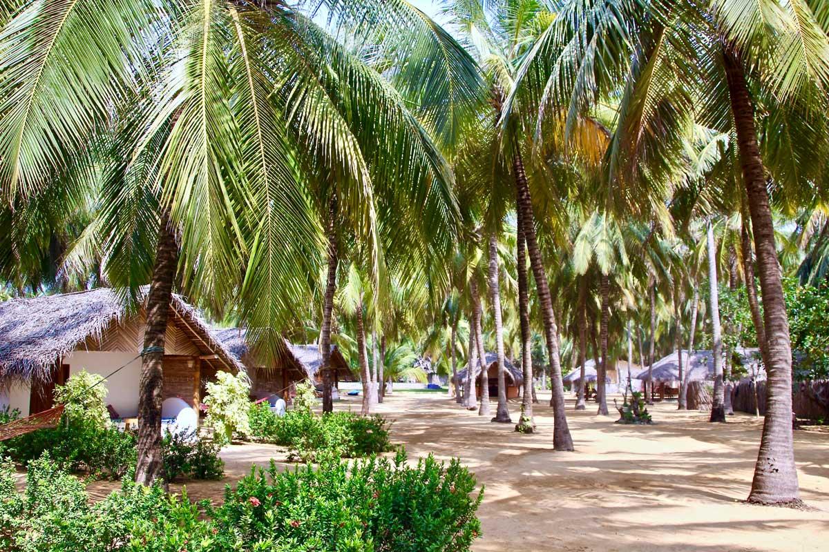 jardin Roshanne Beach Resort