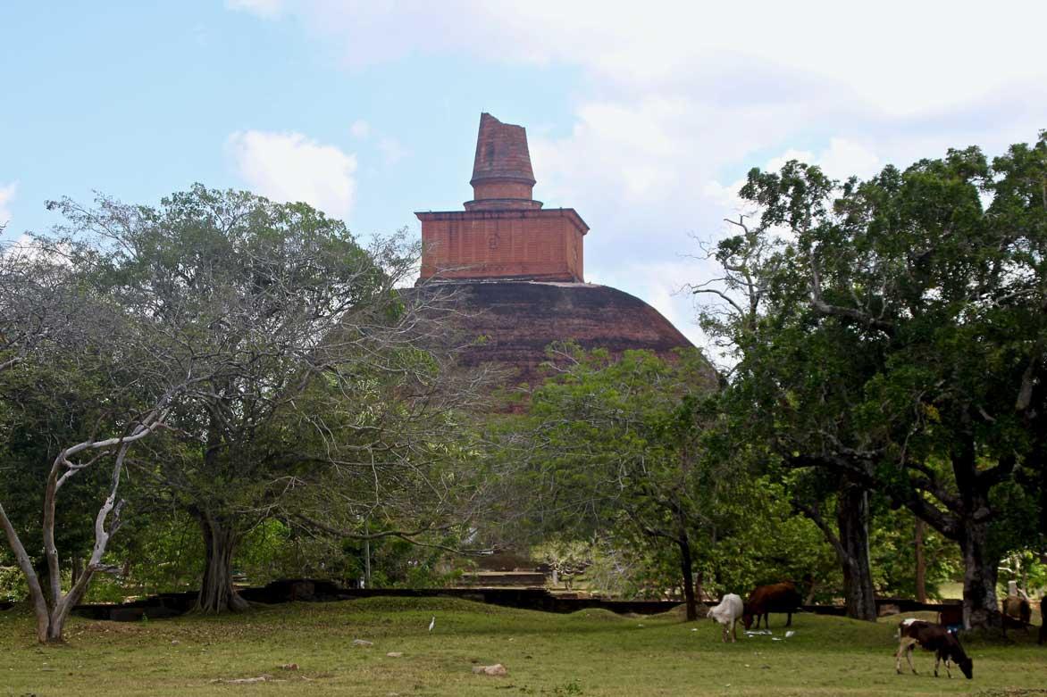 pagode anuradhapura sri lanka